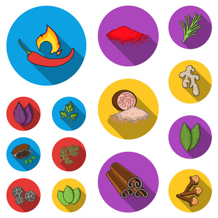 Herb and spices flat icons in set collection for design.Different kinds of seasonings vector symbol stock illustration.