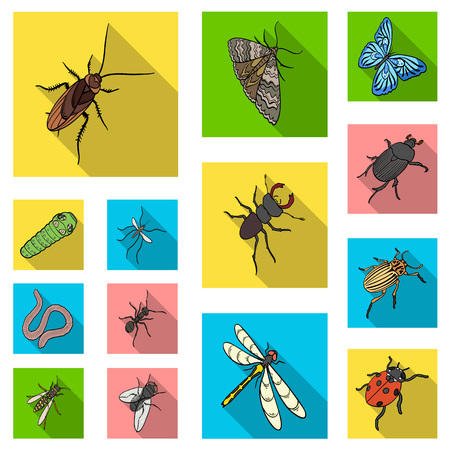 Different kinds of insects flat icons in set collection for design. Insect arthropod vector isometric symbol stock  illustration. Illustration