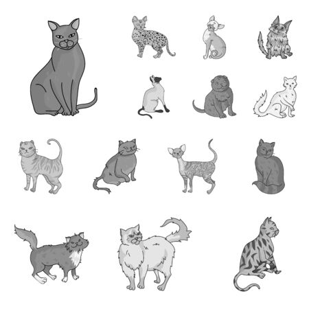 Breeds of cats monochrome icons in set collection for design. Pet cat vector symbol stock  illustration.