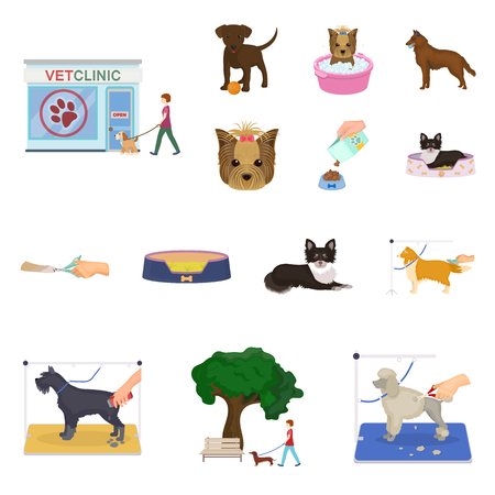 Pet cartoon icons in set collection for design. Care and education vector symbol stock illustration. Illustration