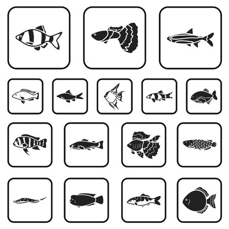 Different types of fish black icons in set collection for design. Marine and aquarium fish vector symbol stock web illustration.
