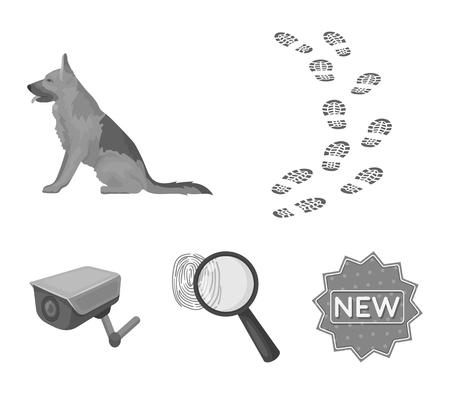 Police Search set collection icons