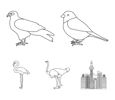 Sparrow and other species. Birds set collection icons in outline style vector symbol stock illustration web.