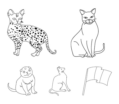 Siamese and other species. Cat breeds set collection icons in outline style vector symbol stock illustration web. Illustration