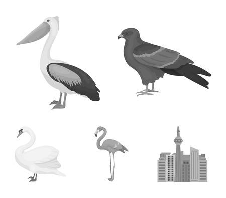 Set of  bird icons in monochrome style illustration.