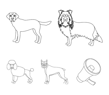 Dog, laika, beagle and other web icon in outline style.Poodle, animal, ears icons in set collection.