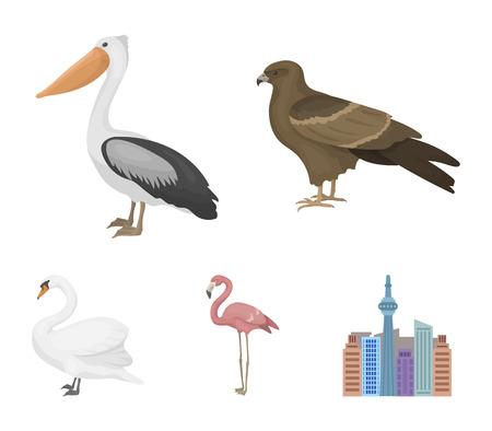 Kite, pelican, flamingo, swan. Birds set collection icons in cartoon style vector symbol stock illustration. Illustration