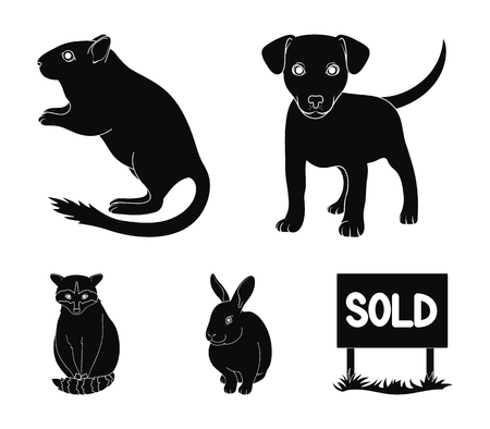 Puppy, rodent, rabbit and other animal species.Animals set collection icons in black style vector symbol stock illustration . Illustration