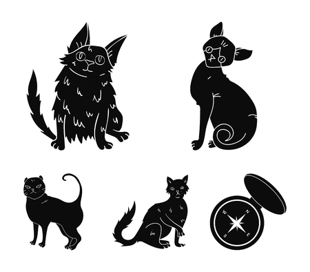 Turkish Angora, British longhair and other species. Cat breeds set collection icons in black style vector symbol stock illustration web. Stockfoto - 95175581