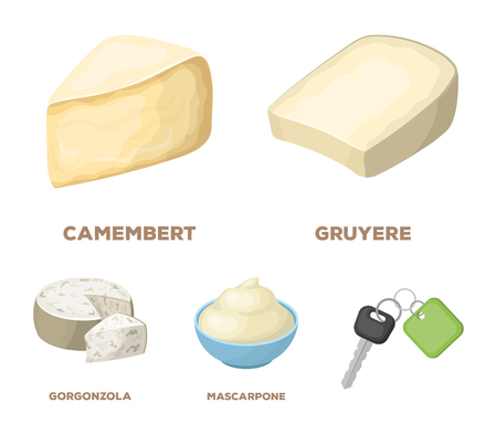 Gruyere, camembert, mascarpone, gorgonzola.Different types of cheese set collection icons in cartoon style vector symbol stock illustration . Stock Vector - 95152543