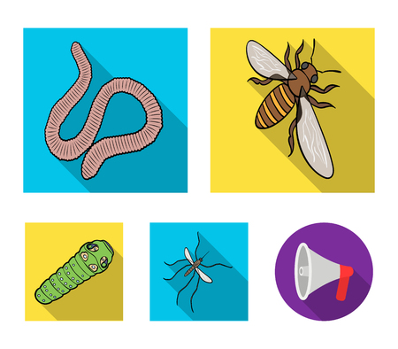 Arthropods insect mosquito, bee.Earth worm, caterpillar,vermicular set collection icons in flat style vector symbol stock isometric illustration . 向量圖像