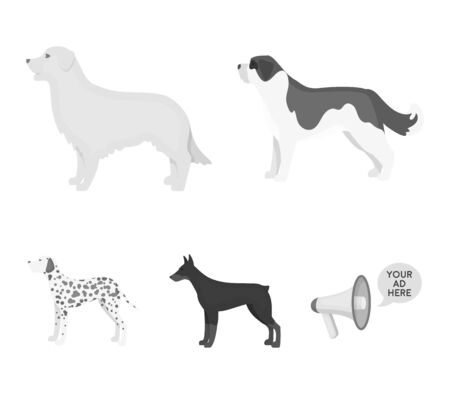 St. Bernard, retriever.doberman, labrador. Dog breeds set collection icons in monochrome style vector symbol stock illustration .