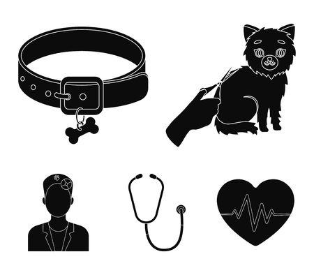 Collar, bone, cat, haircut .Vet Clinic set collection icons in black style vector symbol stock illustration .