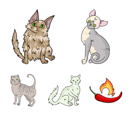 Cat breeds set collection icons in cartoon style vector symbol stock illustration web.