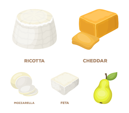 Different types of cheese set collection icons in cartoon style vector symbol stock illustration and other web icon.