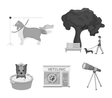 Walking with a dog in the park, combing a dog, a veterinarians office, bathing a pet. Vet clinic and pet care set collection icons in monochrome style vector symbol stock illustration web.