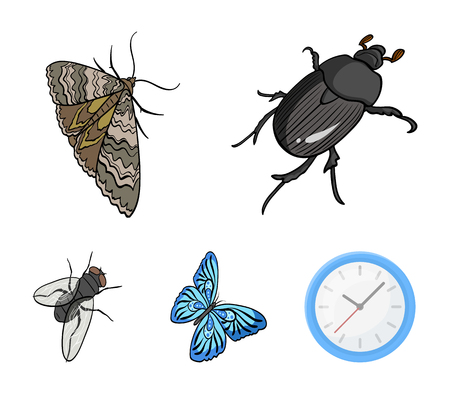 Arthropods insect moth, butterfly, fly. Insects set collection icons in cartoon style. Vector symbol stock isometric illustration web. Illustration