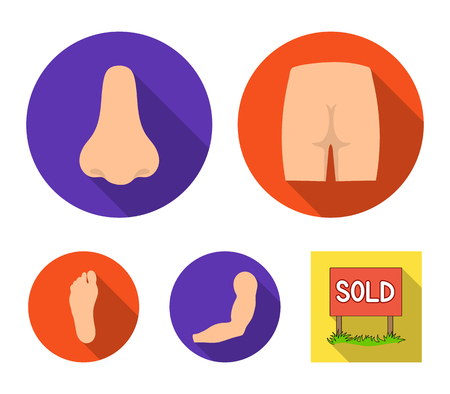 Buttocks, nose, arm, foot. Part of the body set collection icons in flat style. Vector symbol stock illustration web.