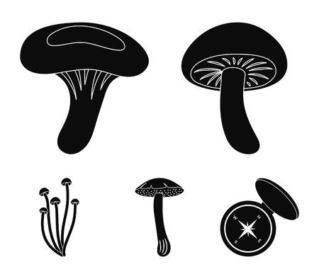 Shiitake, brown cap boletus, enokitake, milk. set collection icons in black style vector symbol stock illustration web.