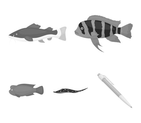 Frontosa, cichlid, phractocephalus hemioliopterus.Fish set collection icons in monochrome style vector symbol stock illustration web.