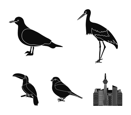 A stork, a seagull and various species - Birds set collection icons in black style vector symbol stock illustration
