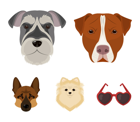 Muzzle of different breeds of dogs set collection icons in colored illustration
