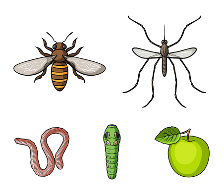 Worm, centipede, wasp, bee, hornet .Insects set collection icons in cartoon style vector symbol stock illustration web. Stock Illustratie