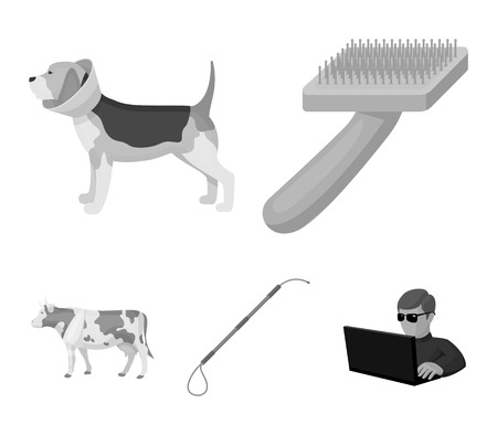 Vet Clinic set collection icons in monochrome style vector