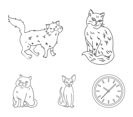 Cat breeds set collection icons in outline style vector Illustration