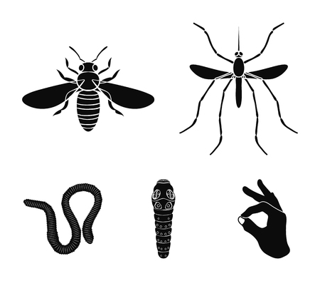 Worm, centipede, wasp, bee, hornet .Insects set collection icons in black style vector symbol stock illustration web.