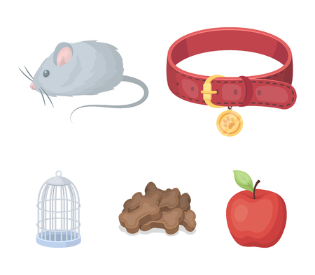 A collar, a forage, a toy, a cage and other products of the zoo store.Pet shop set collection icons in cartoon style vector symbol stock illustration web. Çizim