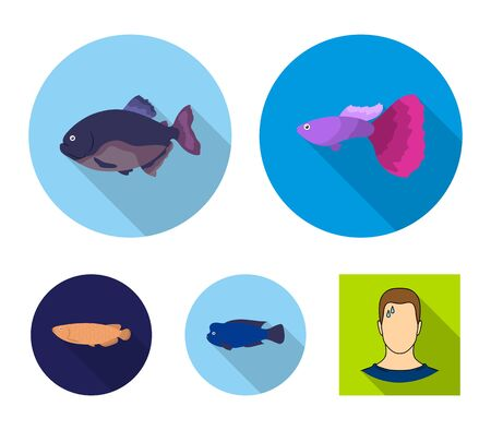 Frontosa, cichlid, phractocephalus hemioliopterus.Fish set collection icons in flat style vector symbol stock illustration .