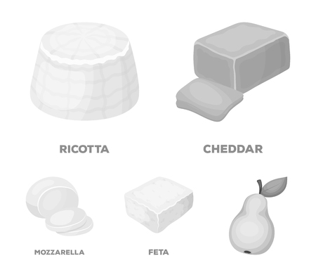 Mozzarella, feta, cheddar, ricotta.Different types of cheese set collection icons in monochrome style vector symbol stock illustration web. Ilustração