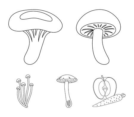 Shiitake, brown cap boletus, enokitake, milk. set collection icons in outline style vector symbol stock illustration .