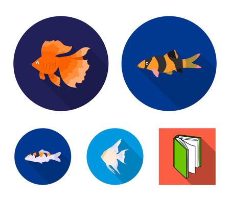 Discus, gold, carp, koi, scleropages, formosus. Fish set collection icons in flat style.