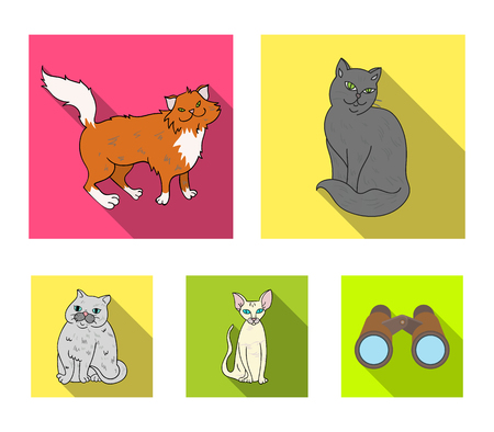 Cat breeds set collection icons in flat style vector symbol stock illustration web.