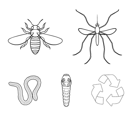 Insects set collection icons in outline style vector symbol stock illustration web. Stock Illustratie