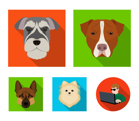 Muzzle of different breeds of dogs.Dog breed Stafford, Spitz, Risenschnauzer, German Shepherd set collection icons in flat style vector symbol stock illustration .