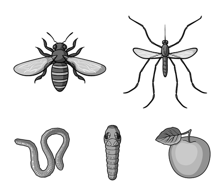 Worm, centipede, wasp, bee, hornet .Insects set collection icons in monochrome style vector symbol stock illustration .