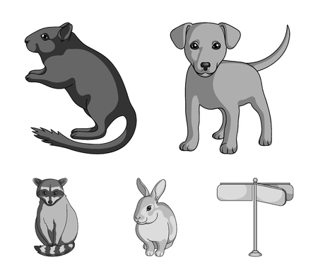 Puppy, rodent, rabbit and other animal species. Animals set collection icons in monochrome style vector symbol stock illustration web. Illustration