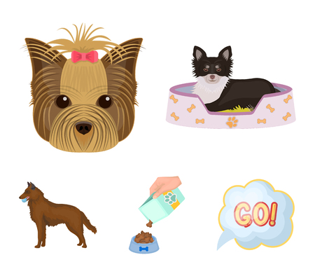 A dog in a lounger , a muzzle of a pet, a bowl with a feed, a sheepdog with a ball in his teeth. Pet ,dog care set collection icons in cartoon style vector symbol stock illustration web.