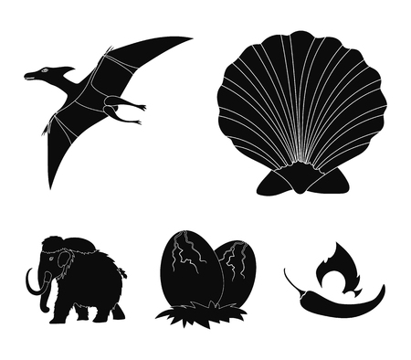 Prehistoric shell, dinosaur eggs,pterodactyl, mammoth. Dinosaur and prehistoric period set collection icons in black style vector symbol stock illustration .