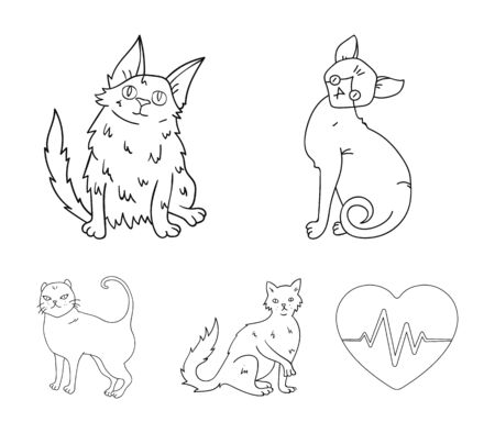Turkish Angora, British longhair and other species. Cat breeds set collection icons in outline style vector symbol stock illustration web. Stock Illustratie