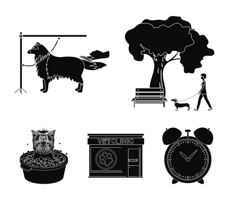 Walking with a dog in the park, combing a dog, a veterinarians office, bathing a pet. Vet clinic and pet care set collection icons in black style vector symbol stock illustration web.
