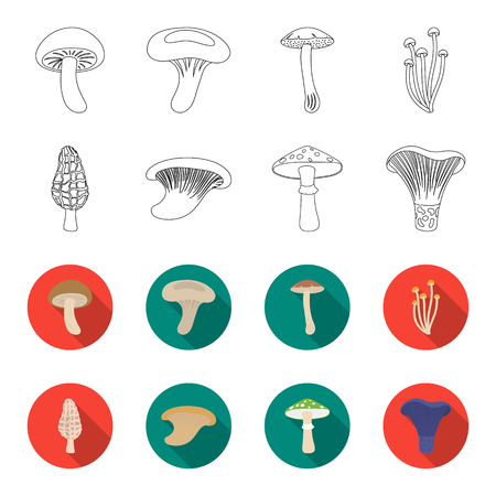 Set of mushroom collection icon illustration.