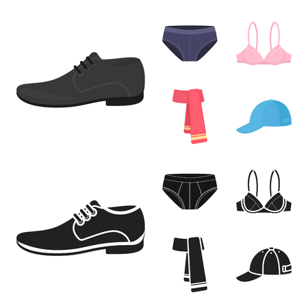 Male shoes, bra, panties, scarf, leather. Clothing set collection icons in cartoon,black style vector symbol stock illustration web. Illustration