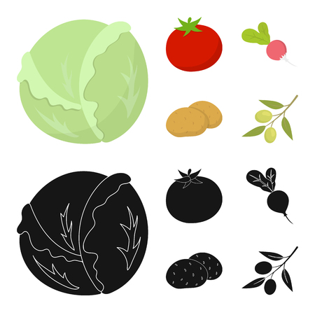 Vegetables set collection icons in cartoon, black style vector symbol stock illustration web.