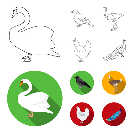 Crow, ostrich, chicken, peacock. Birds set collection icons in outline,flat style vector symbol stock illustration . Illustration