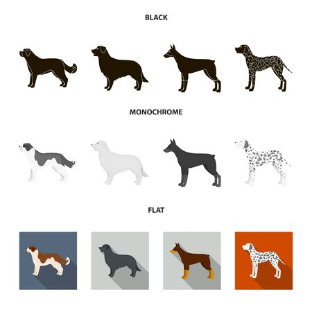 St. Bernard, retriever.doberman, labrador. Dog breeds set collection icons in black, flat, monochrome style vector symbol stock illustration .