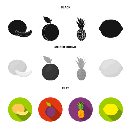 Melon, plum, pineapple, lemon.Fruits set collection icons in black, flat, monochrome style vector symbol stock illustration .